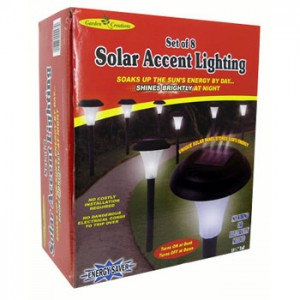 Solar Accent Lighting set of 8